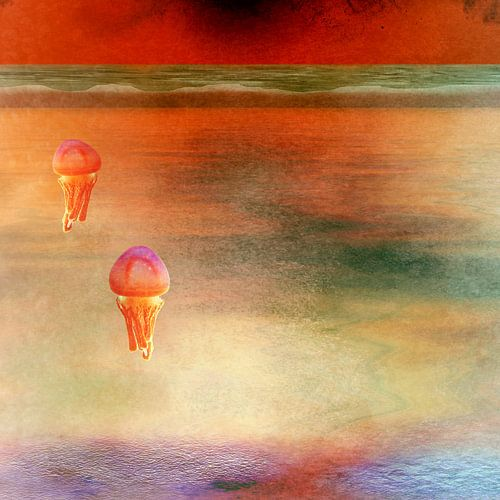 Jellyfish van Bright Designs