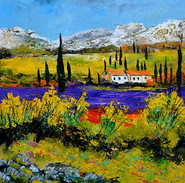 Lavender in Provence von pol ledent
