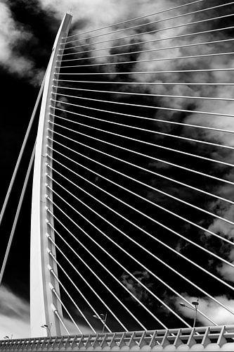 De 'Assut de l'Or Bridge' - kabelbrug in Valencia (z/w) van