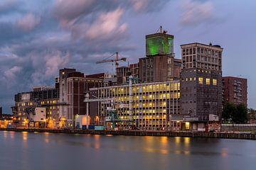 Codrico Fabrik Rotterdam Rijnhaven Gebäude von Jeroen Kleiberg