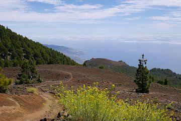 Over de  vulkaan naar de oceaan van Carola van Rooy