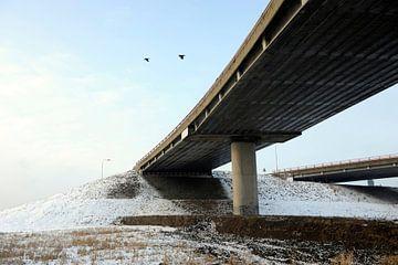 Viaduct van Michel Mees