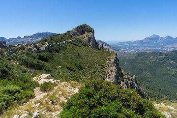 Groene vlakte en uitzicht op Puig Campana van Montepuro