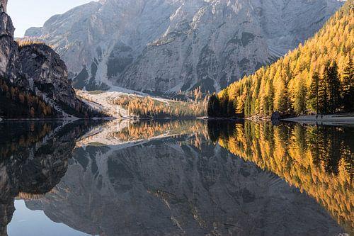 Herfstbossen weerspiegeling - Lago di Braies, Dolomieten, Italië