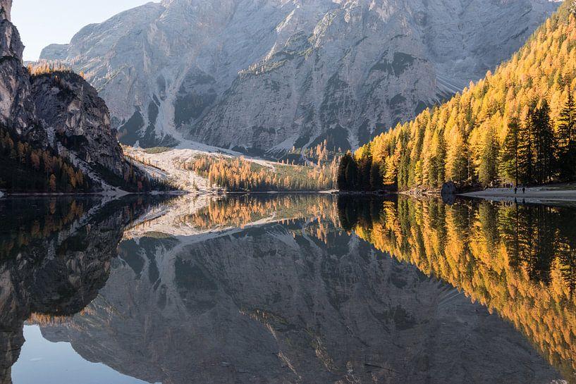 Herfstbossen weerspiegeling - Lago di Braies, Dolomieten, Italië van Thijs van den Broek