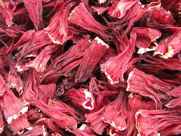 Gedroogde hibiscusbloemen van Daphne Wessel
