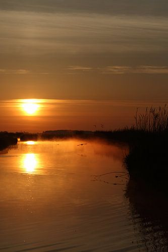 Hollandse Landschappen van Menno Schaefer