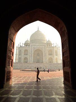 Doorkijkje Taj Mahal van Renzo de Jonge