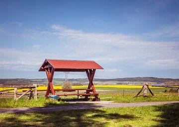 Picknick an der Mecklenburgische Seenplatte von Animaflora PicsStock