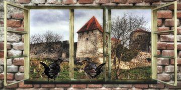 Fensterblick - Amselgespräche  auf der Burg von Christine Nöhmeier