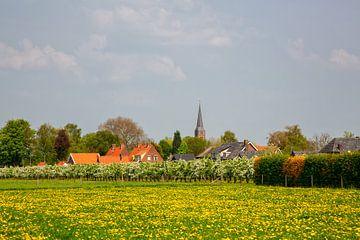 Verger en fleurs et village de la Betuwe sur Bram van Broekhoven