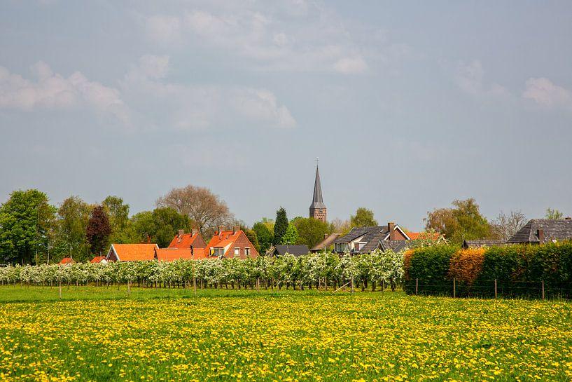Boomgaard in bloesem en dorp in de Betuwe van Bram van Broekhoven
