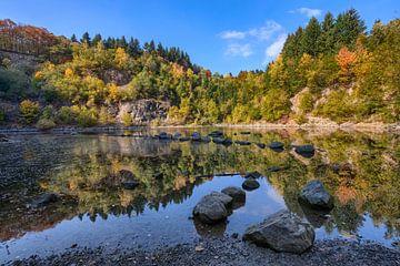 Katzenbuckelsee Südufer im Herbst von Uwe Ulrich Grün