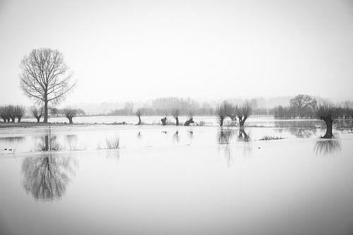 Nederland waterland van Inge van den Brande