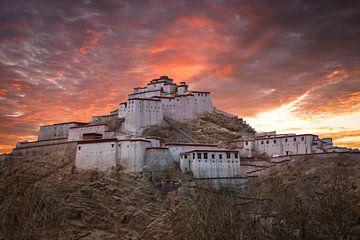 Fort Gyantse bij avond, Tibet van Rietje Bulthuis