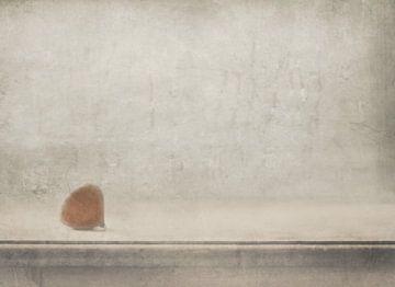 Eenzaamheid staat bij het raam, Delphine Devos van 1x