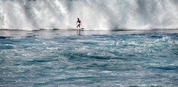 Surfer sur Harrie Muis