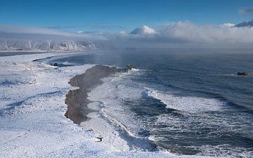 Cape Dyrholaey, Island von Alexander Ludwig