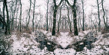 Magische Landschaft Feuchtgebiets-Nationalpark mit Schnee von Ger Beekes