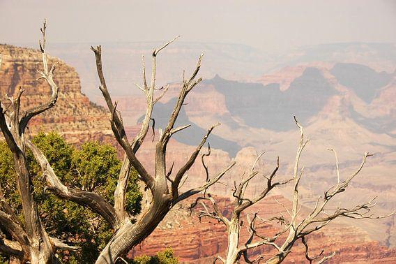 Grand Canyon van Paul van Baardwijk