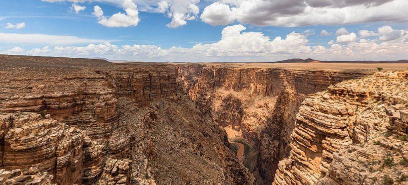 Panorama - De diepte van de Little Colorado Rivier van Remco Bosshard