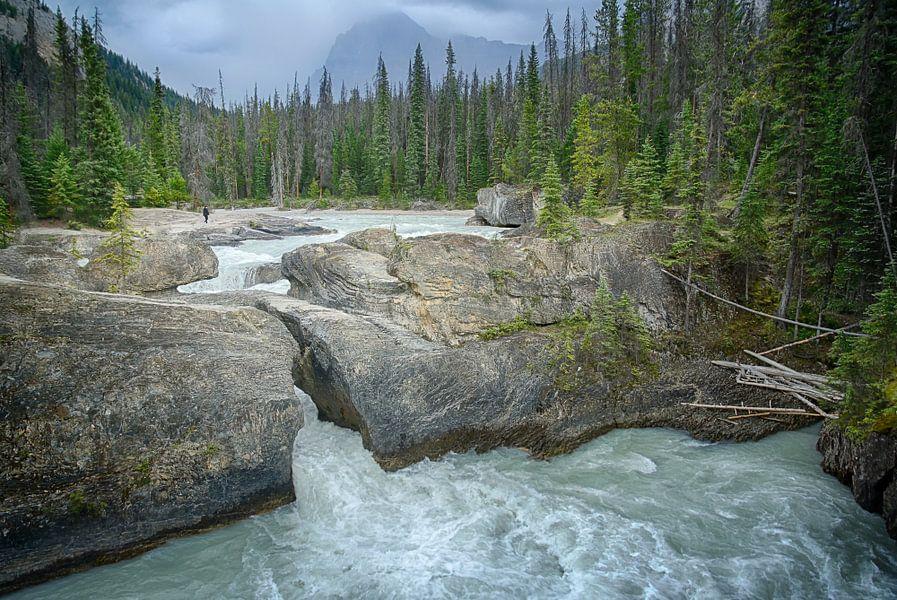 Natuurlijke brug, Yoho NP Canada van Christa Thieme-Krus