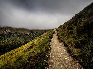 Het Pad naar de Wolken van Rik Pijnenburg