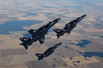Kanadische Luftwaffe CT-155 Falken von Dirk Jan de Ridder