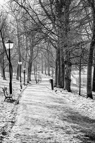 Sterrenburg Utrecht in winterse sferen van
