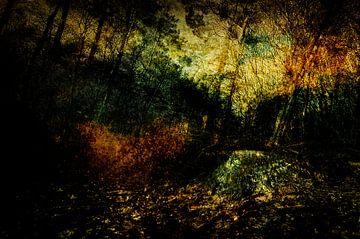 Die Drunense-Dünen bei Loon op Zand #01 von Peter Baak
