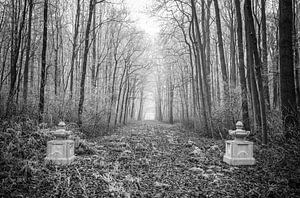 Der neue Melisweerd an einem Wintertag in Schwarz-Weiß