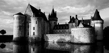 Kasteel van Sully sur Loire von Michiel Wijnbergh