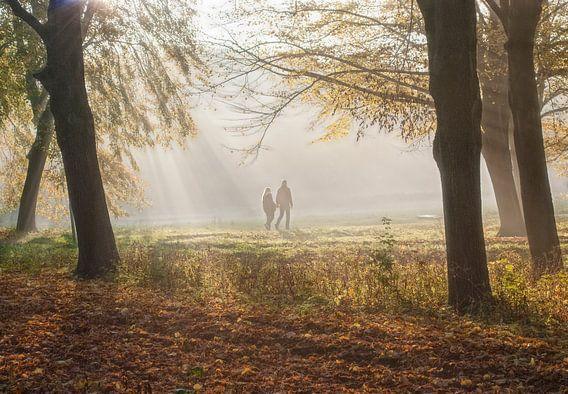 Herfst in bos van Marcel van Balken