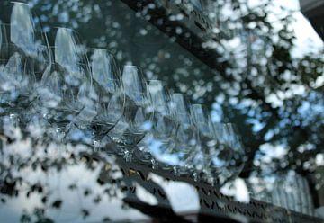 Glas in glas van Ilse Schoneveld
