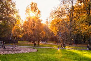 Schöne Herbstfarben im Valkenberg Park, Breda (NL) von Martijn Mureau