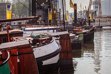 Museumhaven Rotterdam van Rob Boon