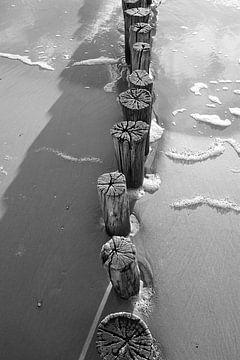 Paalhoofden van Rob Donders Beeldende kunst