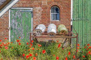 oude schuur met melkbussen en klaprozen