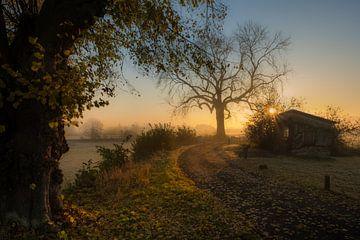 Zonsopkomst bij schuurtje en oude boom Ravenswaaij Gelderland van Moetwil en van Dijk - Fotografie