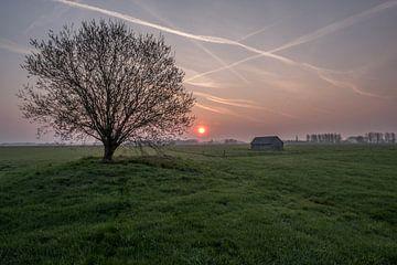 Weiland met boom en schuur bij zonsopkomst 03 von Moetwil en van Dijk - Fotografie