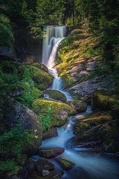 De watervallen van Triberg van Henk Meijer Photography