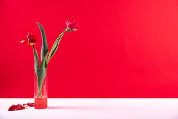 modernes Stilleben rot von Anita Visschers