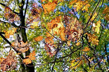 vlindervleugels van Hanneke Luit