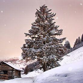 Verdwaalde sneeuwvlokken van Christa Thieme-Krus
