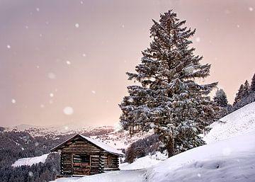 Flocons de neige perdus sur
