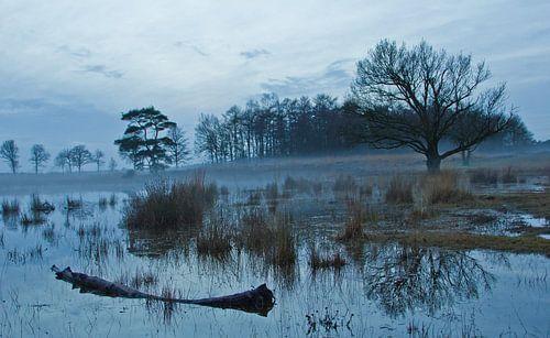 water von Anne Koop