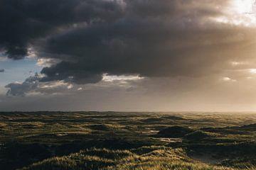 Hollandse Duinen von Lars Korzelius