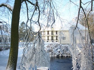 Winter bij Kasteel De Vanenburg van Wilbert Van Veldhuizen