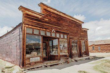 Ghosttown shop van Angelica van den Berg