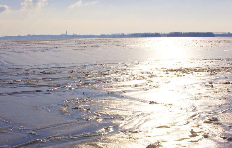 A frozen reflection van Brian Morgan